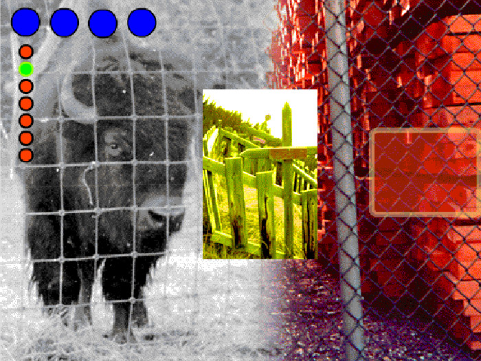 Collage of bison, old graveyard and large stack of lumber, coloured dots superimposed