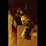 Disturbing image of grotesque black figure wrapped in twine hung from ceiling